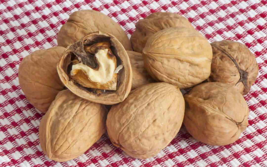 Quels sont les bienfaits des noix ?