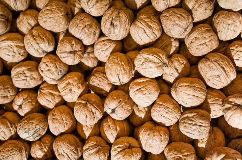 Paquet de noix - Nutri Green Planet